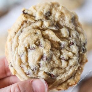 Soft and Chewy Chocolate Chip Cookie with mini chocolate chips