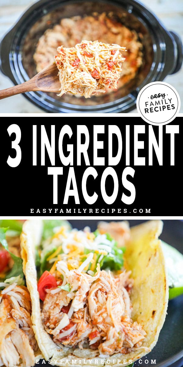 Crock pot with shredded chicken for tacos