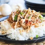 Thai Style pulled pork served on top of rice drizzled with spicy mayo